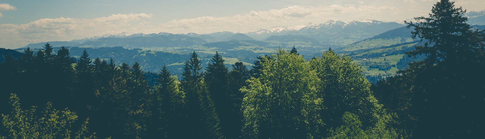 Хөвсгөл аймгийн байгаль орчны цахим биржийн систем